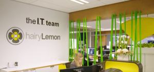 Who are the IT team?